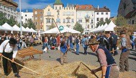 Bread and strudel market in Bressanone
