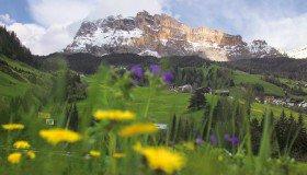 Dolomitenwelt
