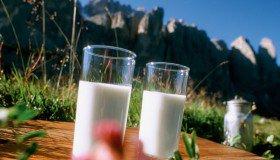 Südtiroler Milchfest