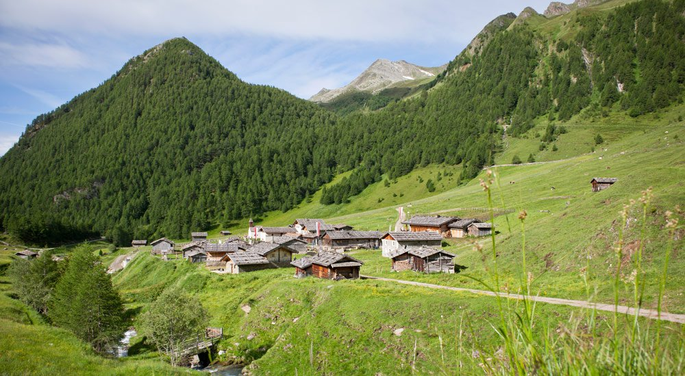 Summer holidays in the mountains: The top of pleasure